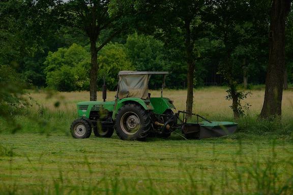 koszenie trawników, wykaszanie