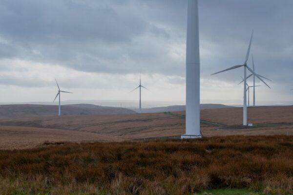 prace ziemne przy budowie elektrowni wiatrowych , prace ziemne